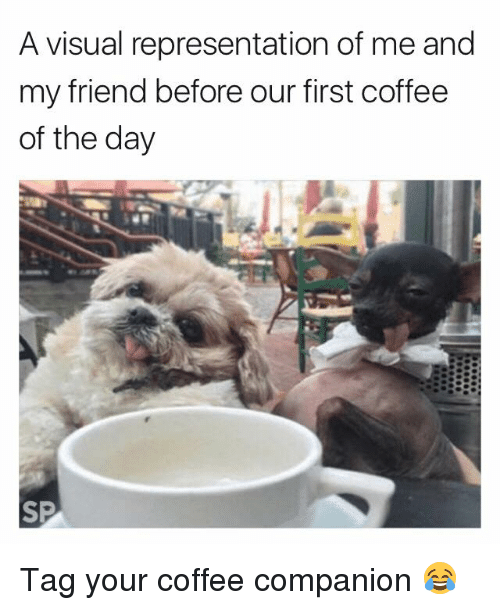 Coffee, Friend, and Day: A visual representation of me and  my friend before our first coffee  of the day Tag your coffee companion 😂