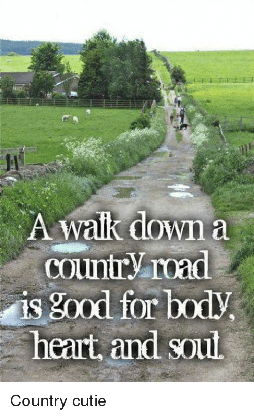 Memes, 🤖, and  Country Road: A Walk down a  Country road  is good for  heart and soul Country cutie