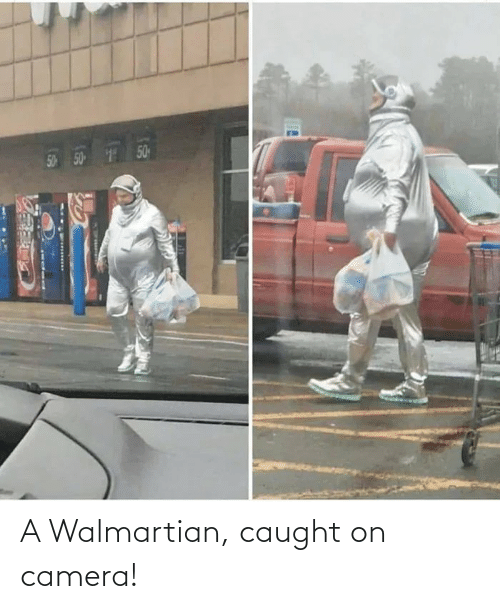 caught on camera: A Walmartian, caught on camera!
