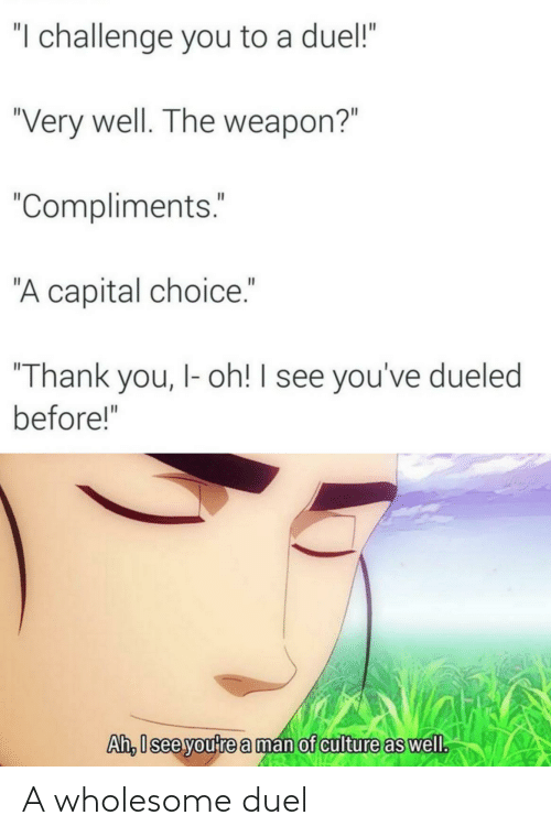 duel: A wholesome duel