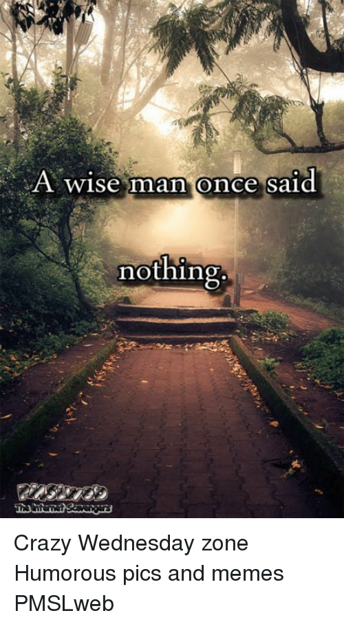 A Wise Man Once Said: A wise man once said  nothing <p>Crazy Wednesday zone  Humorous pics and memes  PMSLweb </p>