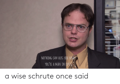 Schrute: a wise schrute once said