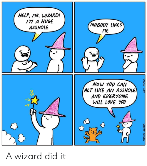 wizard: A wizard did it