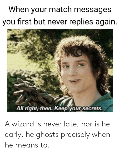 Nor: A wizard is never late, nor is he early, he ghosts precisely when he means to.