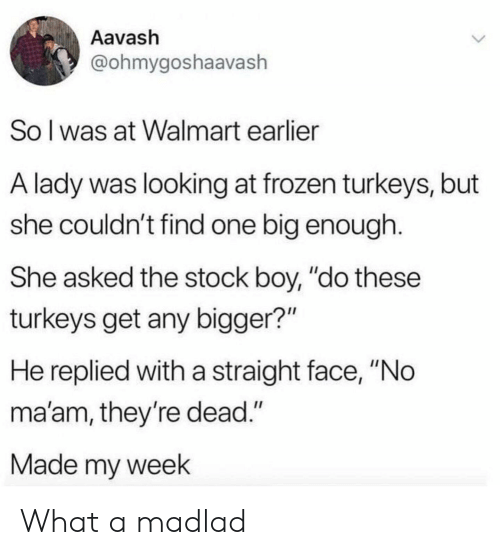 """no maam: Aavash  @ohmygoshaavash  So I was at Walmart earlier  A lady was looking at frozen turkeys, but  she couldn't find one big enough  She asked the stock boy, """"do these  turkeys get any bigger?""""  He replied witha straight face, """"No  ma'am, they're dead.""""  Made my week What a madlad"""