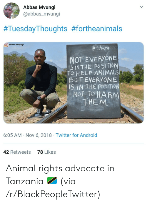 Android, Animals, and Blackpeopletwitter: Abbas Mvungi  @abbas_mvungi  #TuesdayThoughts #fortheanimals  abbas-mvungi  # Share  NOT EVERYONE  IS INTHE POSITION  TO HELP ANIMALS  BUT EVERYONE  SIN THE POSITION  NOT TO HARM  THEM  6:05 AM Nov 6, 2018 Twitter for Android  78 Likes  42 Retweets Animal rights advocate in Tanzania 🇹🇿 (via /r/BlackPeopleTwitter)