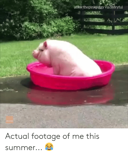 Abby: abby thepinkpiggy via Storyful  ÁN  itoryfu Actual footage of me this summer... 😂