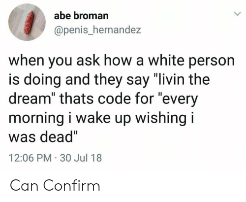 "Hernandezing: abe broman  @penis_hernandez  when you ask how a white person  is doing and they say ""livin the  dream"" thats code for ""every  morning i wake up wishing i  was dead""  12:06 PM 30 Jul 18 Can Confirm"