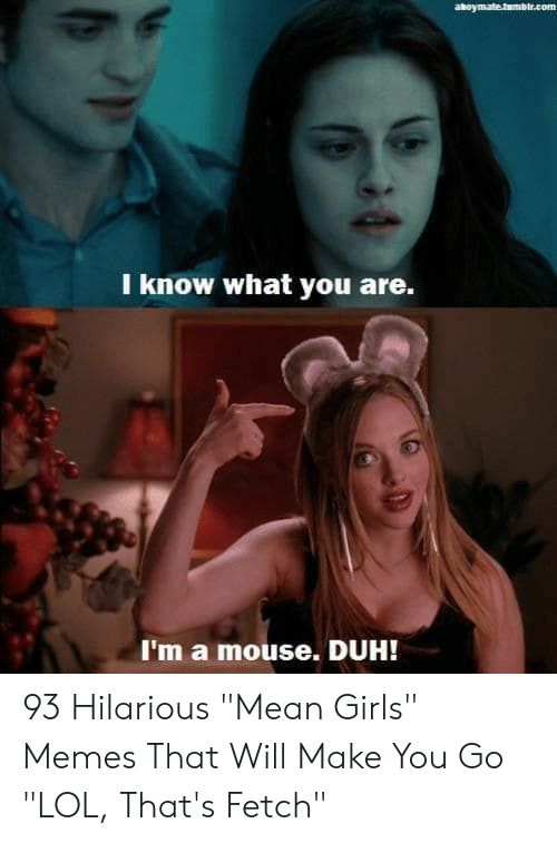 "fetch: aboymate.tumblr.com  I know what you are.  I'm a mouse. DUH! 93 Hilarious ""Mean Girls"" Memes That Will Make You Go ""LOL, That's Fetch"""