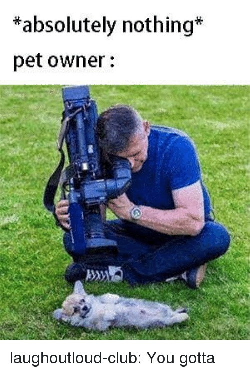 Club, Tumblr, and Blog: *absolutely nothing*  pet owner: laughoutloud-club:  You gotta