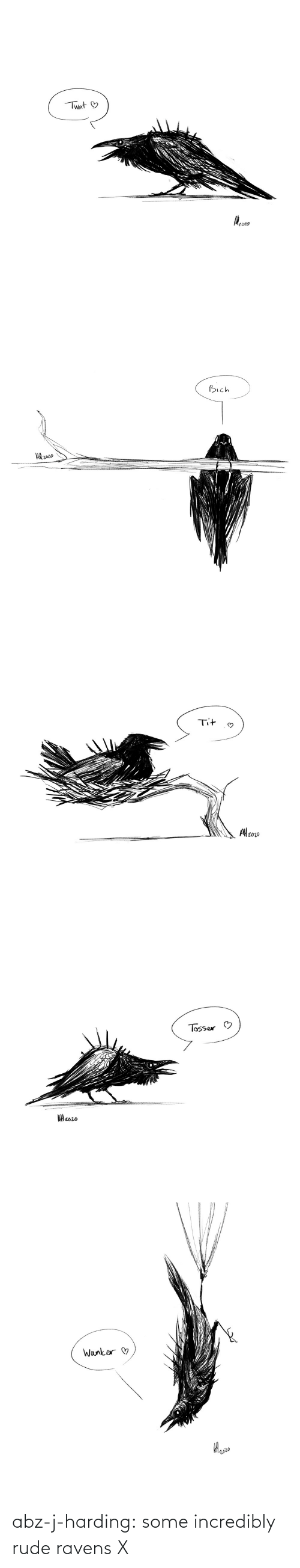Incredibly: abz-j-harding: some incredibly rude ravens X