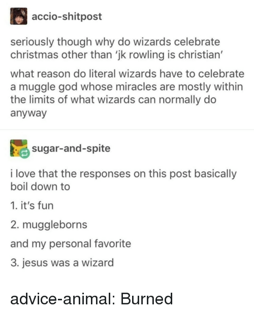 Muggle: accio-shitpost  seriously though why do wizards celebrate  christmas other than 'jk rowling is christian'  what reason do literal wizards have to celebrate  a muggle god whose miracles are mostly within  the limits of what wizards can normally do  anyway  sugar-and-spite  i love that the responses on this post basically  boil down to  1. it's fun  2. muggleborns  and my personal favorite  3. jesus was a wizard advice-animal:  Burned