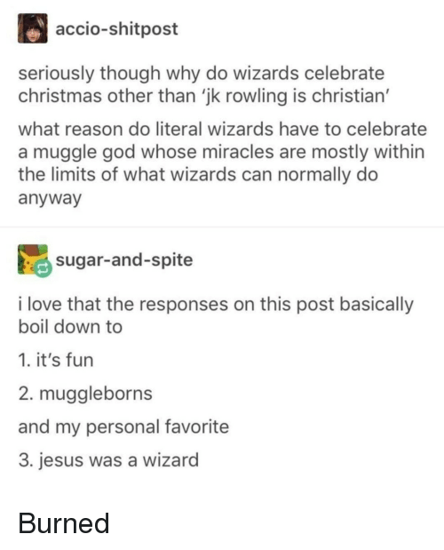Muggle: accio-shitpost  seriously though why do wizards celebrate  christmas other than 'jk rowling is christian'  what reason do literal wizards have to celebrate  a muggle god whose miracles are mostly within  the limits of what wizards can normally do  anyway  sugar-and-spite  i love that the responses on this post basically  boil down to  1. it's fun  2. muggleborns  and my personal favorite  3. jesus was a wizard Burned