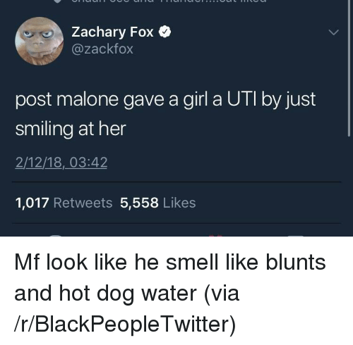 uti: achary FoX  @zackfox  post malone gave a girl a UTI by just  smiling at her  2/12/18,03:42  1,017 Retweets 5,558 Likes <p>Mf look like he smell like blunts and hot dog water (via /r/BlackPeopleTwitter)</p>