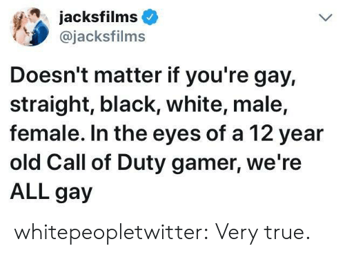 True, Tumblr, and Black: acksfilms  @jacksfilms  Doesn't matter if you're gay,  straight, black, white, male,  female. In the eyes of a 12 year  old Call of Duty gamer, we re  ALL gay whitepeopletwitter:  Very true.
