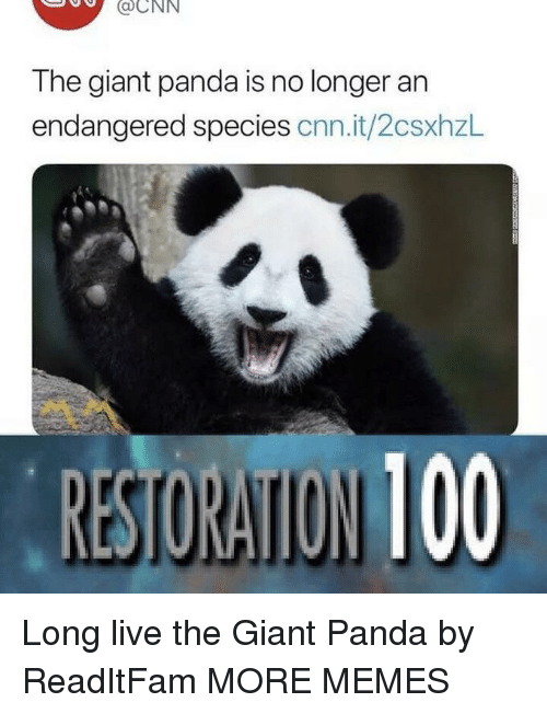 giant panda: aCNN  The giant panda is no longer an  endangered species cnn.it/2csxhzl Long live the Giant Panda by ReadItFam MORE MEMES