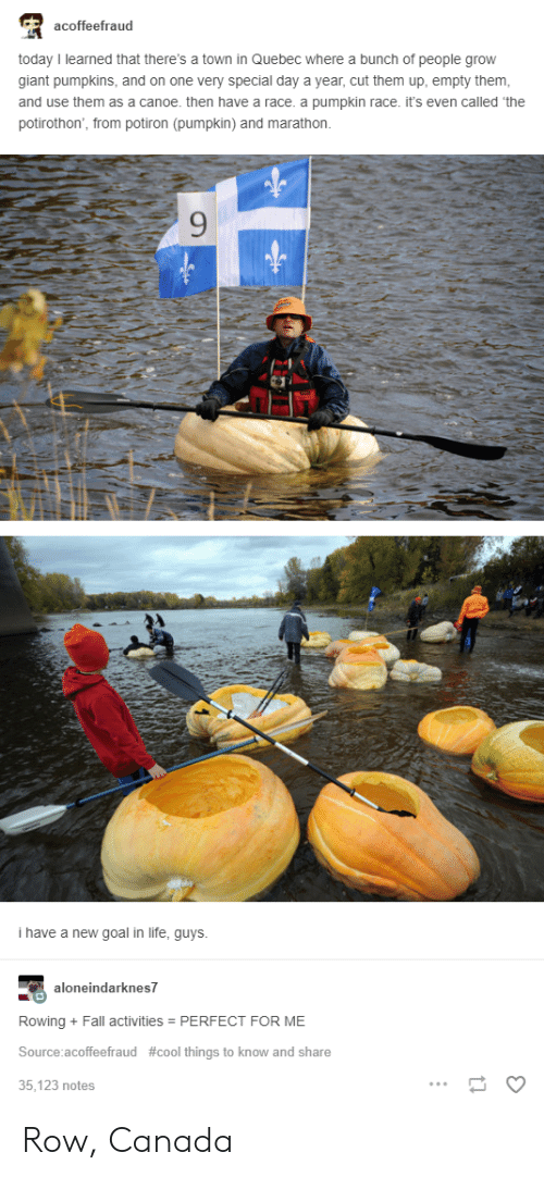 Rowing: acoffeefraud  today I learned that there's a town in Quebec where a bunch of people grow  giant pumpkins, and on one very special day a year, cut them up, empty them  and use them as a canoe. then have a race. a pumpkin race. it's even called 'the  potirothon, from potiron (pumpkin) and marathon.  9  i have a new goal in life, guys  neindarknes7  Rowing + Fall activities PERFECT FOR ME  Source:acoffeefraud #cool things to know and share  35,123 notes Row, Canada
