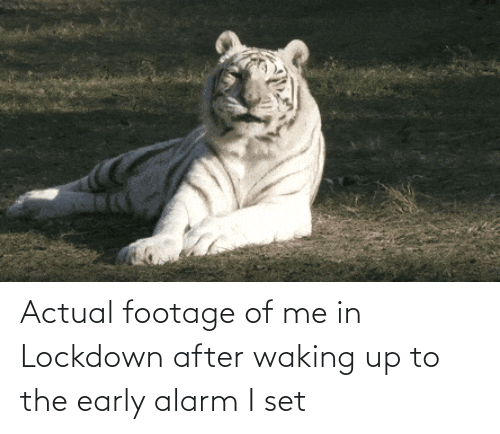 Alarm: Actual footage of me in Lockdown after waking up to the early alarm I set