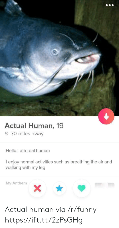 Funny, Hello, and Human: Actual Human, 19  o 70 miles away  Hello I am real human  I enjoy normal activities such as breathing the air and  walking with my leg  My Anthenm Actual human via /r/funny https://ift.tt/2zPsGHg