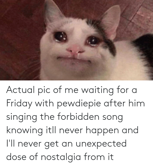 knowing: Actual pic of me waiting for a Friday with pewdiepie after him singing the forbidden song knowing itll never happen and I'll never get an unexpected dose of nostalgia from it