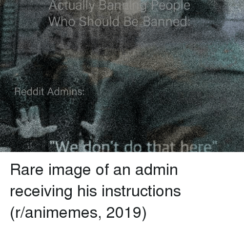 Actually B E E Who Should Be Banned Reddit Admins We Don T Do That