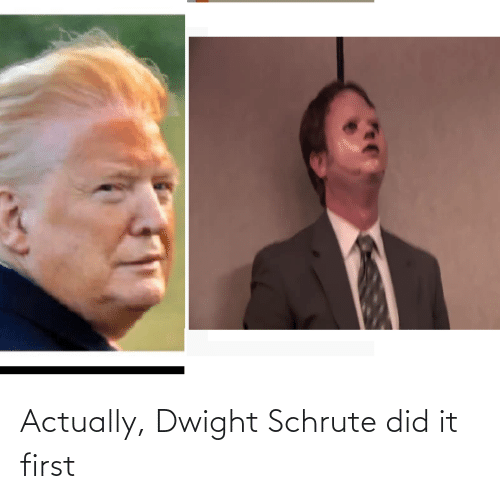 Schrute: Actually, Dwight Schrute did it first