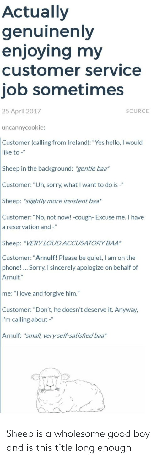 """Ireland: Actually  genuinenly  enjoying my  customer service  job sometimes  25 April 2017  SOURCE  uncannycookie:  Customer (calling from Ireland): """"Yes hello, I would  like to -""""  Sheep in the background: gentle baa*  Customer: """"Uh, sorry, what I want to do is-""""  Sheep: slightly more insistent baa*  Customer: """"No, not now! -cough- Excuse me. I have  a reservation and -""""  Sheep: VERY LOUDACCUSATORY BAA  Customer: """"Arnulf! Please be quiet, I am on the  phone!... Sorry, I sincerely apologize on behalf of  Arnulf""""  me: """"I love and forgive him.""""  Customer: """"Don't, he doesn't deserve it. Anyway,  I'm calling about -""""  Arnulf: small, very self-satisfied baa Sheep is a wholesome good boy and is this title long enough"""