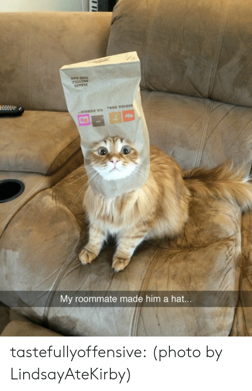 Reddit, Roommate, and Target: ad  My roommate made him a hat tastefullyoffensive:  (photo by LindsayAteKirby)