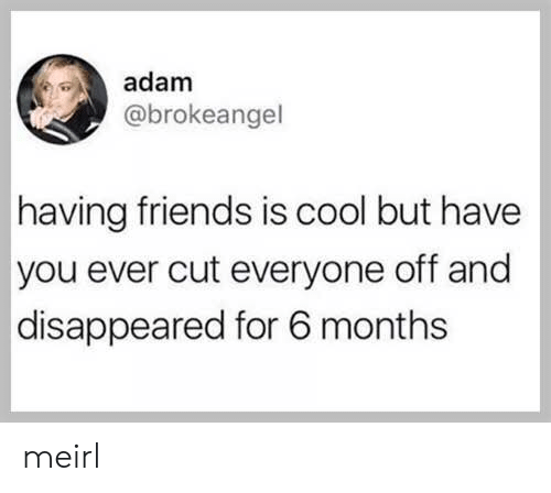 Cool But: adam  @brokeangel  having friends is cool but have  you ever cut everyone off and  disappeared for 6 months meirl