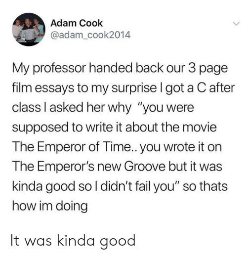 """Emperor's New Groove, Fail, and Good: Adam Cook  @adam_cook2014  My professor handed back our 3 page  film essays to my surprise I got a C after  class Il asked her why """"you were  supposed to write it about the movie  The Emperor of Time.. you wrote it on  The Emperor's new Groove but it was  kinda good so l didn't fail you"""" so thats  how im doing It was kinda good"""