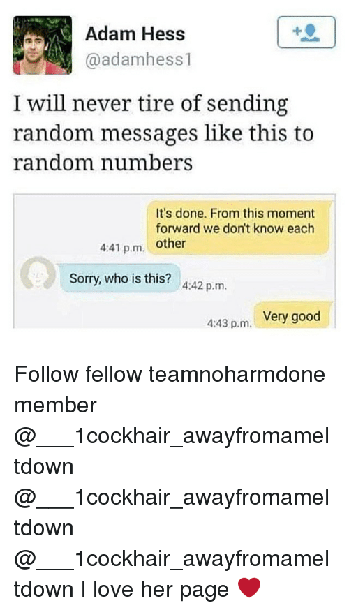 Adamated: Adam Hess  @adamhess1  I will never tire of sending  random messages like this to  random numbers  It's done. From this moment  forward we don't know each  4:41 p.m. other  Sorry, who is this? 4:42 p.m.  Very good  4:43 p.m. Follow fellow teamnoharmdone member @___1cockhair_awayfromameltdown @___1cockhair_awayfromameltdown @___1cockhair_awayfromameltdown I love her page ❤️
