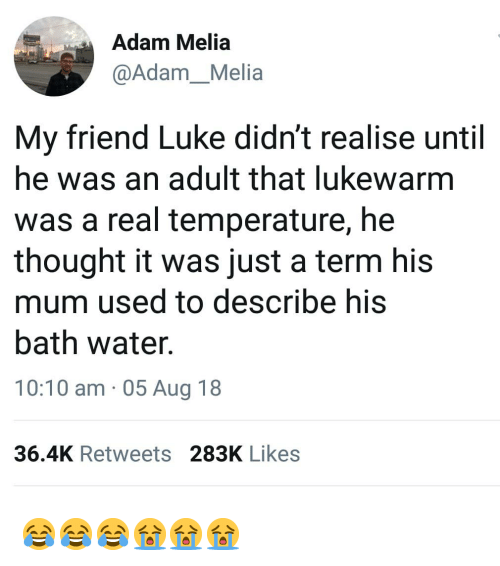 Memes, Water, and Thought: Adam Melia  @Adam_Melia  My friend Luke didn't realise until  he was an adult that lukewarm  was a real temperature, he  thought it was just a term his  mum used to describe his  bath water.  10:10 am 05 Aug 18  36.4K Retweets 283K Likes 😂😂😂😭😭😭