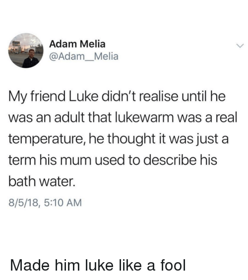 Water, Thought, and Him: Adam Melia  @Adam_Melia  My friend Luke didn't realise until he  was an adult that lukewarm was a real  temperature, he thought it was just a  term his mum used to describe his  bath water.  8/5/18, 5:10 AM Made him luke like a fool