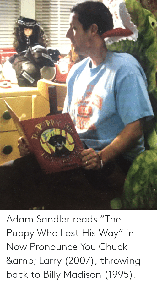 """Adam Sandler: Adam Sandler reads """"The Puppy Who Lost His Way"""" in I Now Pronounce You Chuck & Larry (2007), throwing back to Billy Madison (1995)."""