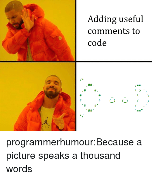 Tumblr, Blog, and A Picture: Adding useful  comments to  code  ft)  I; programmerhumour:Because a picture speaks a thousand words
