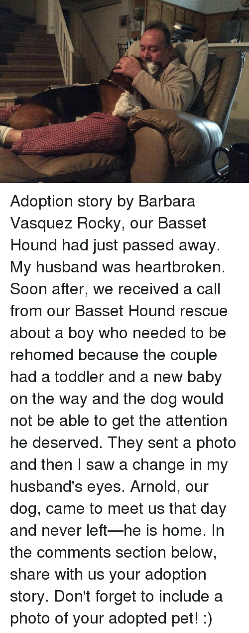 Attentation: Adoption story by Barbara Vasquez  Rocky, our Basset Hound had just passed away. My husband was heartbroken. Soon after, we received a call from our Basset Hound rescue about a boy who needed to be rehomed because the couple had a toddler and a new baby on the way and the dog would not be able to get the attention he deserved. They sent a photo and then I saw a change in my husband's eyes. Arnold, our dog, came to meet us that day and never left—he is home.  In the comments section below, share with us your adoption story. Don't forget to include a photo of your adopted pet! :)