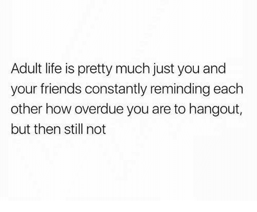 Adulter: Adult life is pretty much just you and  your friends constantly reminding each  other how overdue you are to hangout,  but then still not