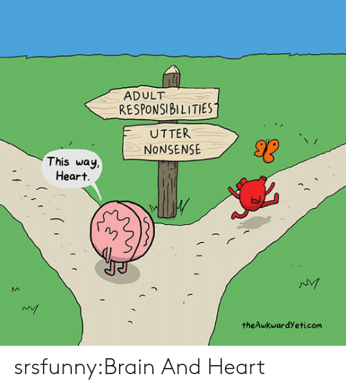 Theawkwardyeti: ADULT  RESPONSIBILITIES  UTTER  NONSENSE  This way  Heart  theAwkwardYeti.com srsfunny:Brain And Heart