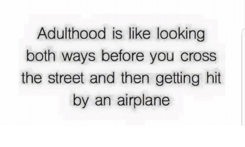Getting Hit: Adulthood is like looking  both ways before you cross  the street and then getting hit  by an airplane