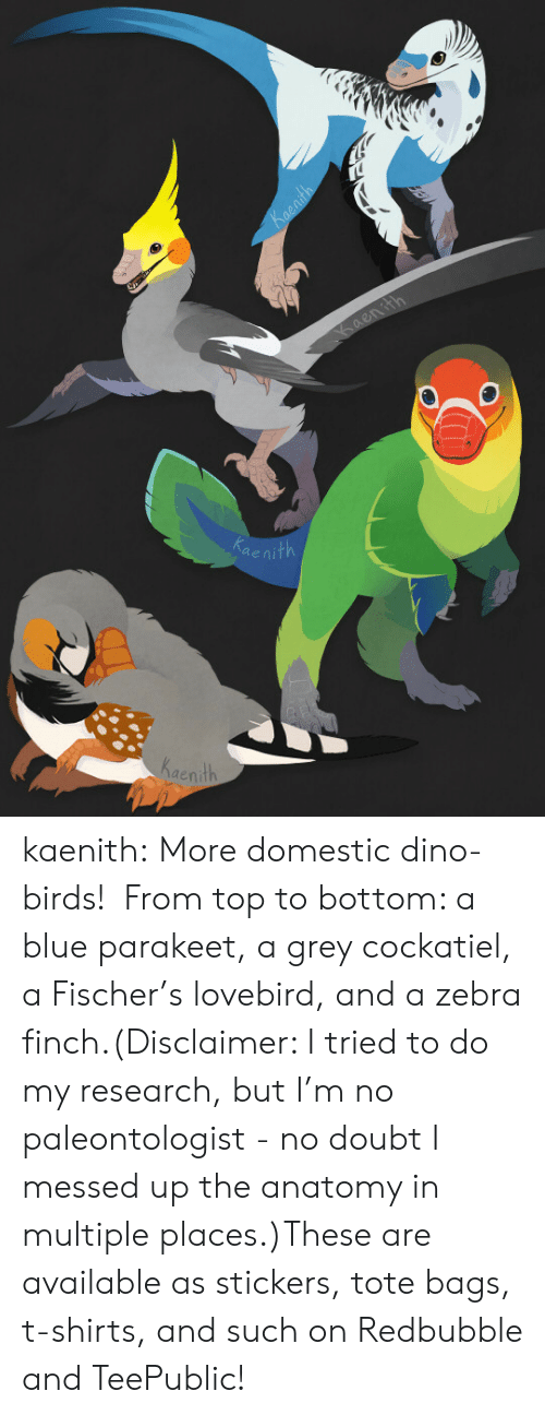 t-shirts: ae  Kaenith kaenith:  More domestic dino-birds!  From top to bottom: a blue parakeet, a grey cockatiel, a Fischer's lovebird, and a zebra finch.(Disclaimer: I tried to do my research, but I'm no paleontologist - no doubt I messed up the anatomy in multiple places.)These are available as stickers, tote bags, t-shirts, and such on Redbubble and TeePublic!