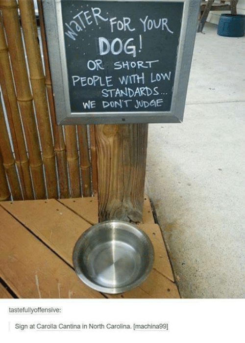 Offensives: AERFOR YOUR  DOG!  OR SHORT  PEOPLE WITH Low  STANDARDS  WE DONT JUDGE  tastefully offensive  Sign at Carolla Cantina in North Carolina. [machina99]