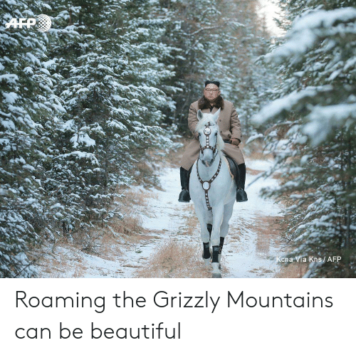Kena: AFP  Kena Via Kns/ AFP Roaming the Grizzly Mountains can be beautiful