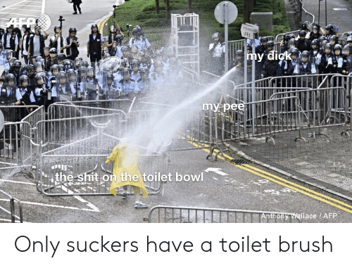 Reddit, Shit, and Dick: AFR  my dick  my pee  the shit on the toilet bowl  Anthony Wallace / AFP Only suckers have a toilet brush