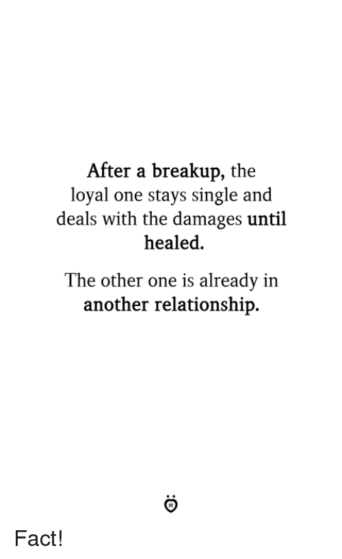 Single, Another, and Damages: After a breakup, the  loyal one stays single and  deals with the damages until  healed.  The other one is already in  another relationship. Fact!
