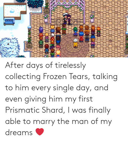 Collecting: After days of tirelessly collecting Frozen Tears, talking to him every single day, and even giving him my first Prismatic Shard, I was finally able to marry the man of my dreams ❤️