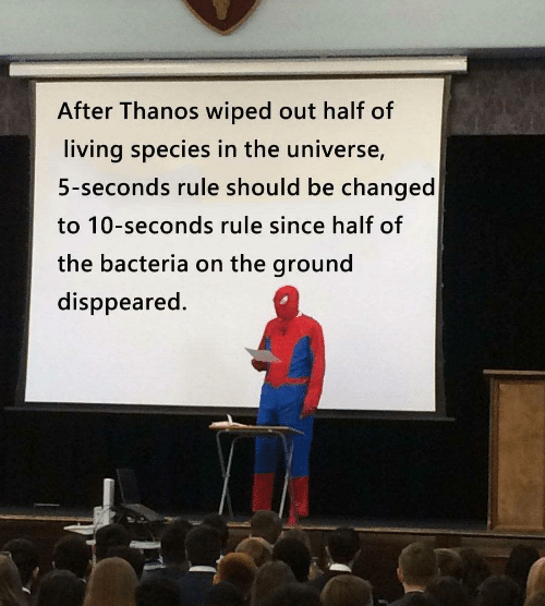 wiped: After Thanos wiped out half of  living species in the universe,  5-seconds rule should be changed  to 10-seconds rule since half of  the bacteria on the ground  disppeared.