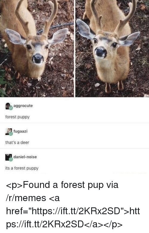 "Deer, Memes, and Puppy: aggrocute  forest puppy  fugaazi  that's a deer  daniel-noise  its a forest puppy <p>Found a forest pup via /r/memes <a href=""https://ift.tt/2KRx2SD"">https://ift.tt/2KRx2SD</a></p>"