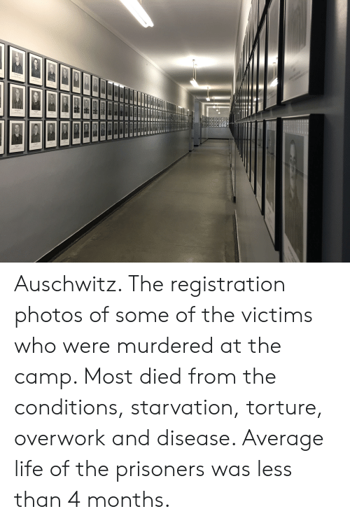 Life, Auschwitz, and Prisoners: aGS CHc  JAAACHOC  EMBAND Auschwitz. The registration photos of some of the victims who were murdered at the camp. Most died from the conditions, starvation, torture, overwork and disease. Average life of the prisoners was less than 4 months.