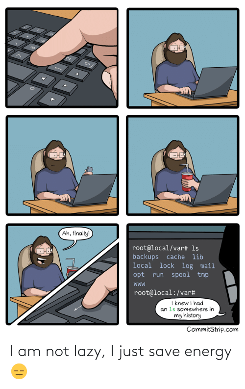 I Knew: Ah, finally!  root@local/var# 1s  backups cache lib  local lock log mail  opt run spool tmp  root@local:/var#  I knew I had  an 1s somewhere in  my history  CommitStrip.com I am not lazy, I just save energy 😑