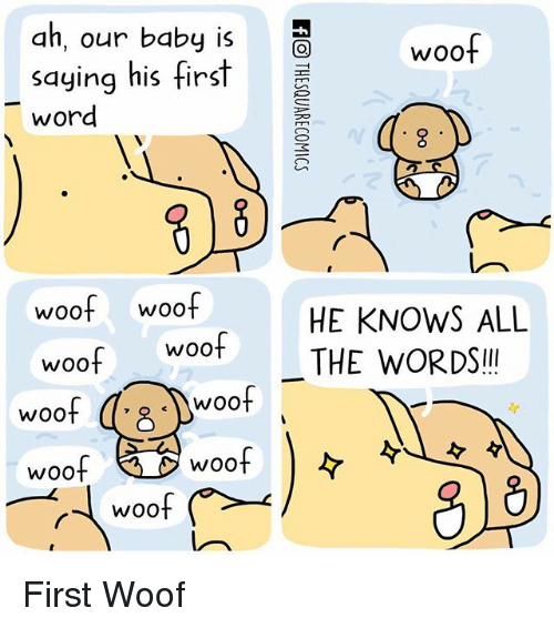 """Woofe: ah, our baby is  saying his first  word  woof woof  woof  woof  woof  woof  woof  WOO  WOO  woof  HE KNOWS ALL  THE WORDS""""! First Woof"""